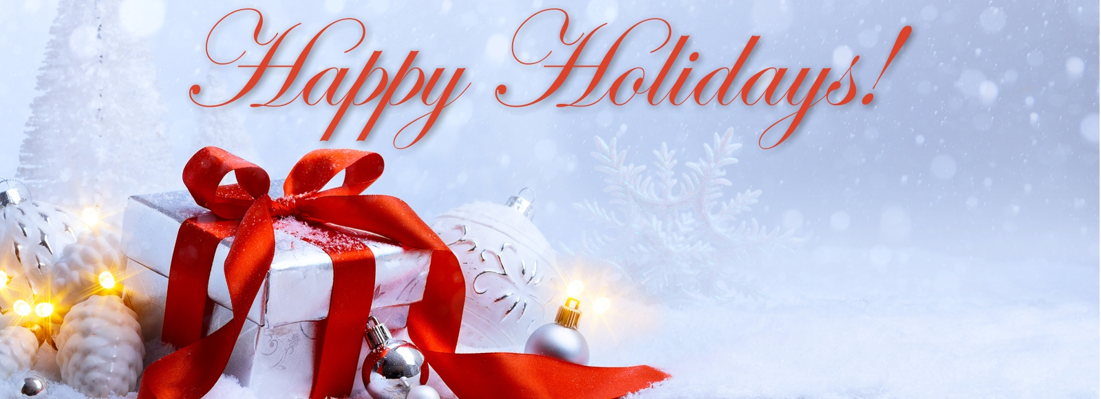 Happy Holidays from MG's GRAND Day Spa